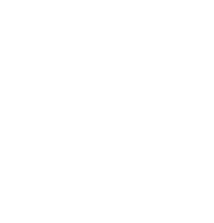 School of Visual Concepts Logo